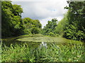 SP3726 : Lake in Heythrop Park, near Chipping Norton by Malc McDonald