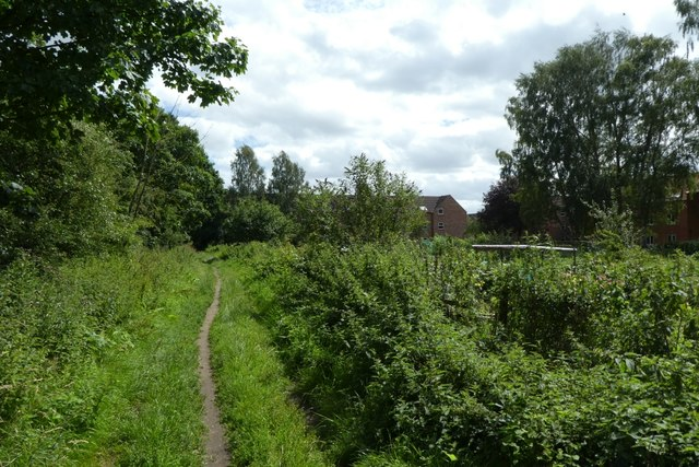Path beside the allotments