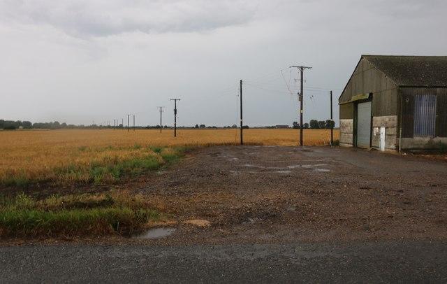 Field by Chestnut Farm near Peakirk
