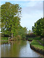 SJ6353 : Shropshire Union Canal north of Acton in Cheshire by Roger  Kidd