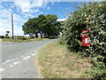 TG1220 : Reepham Road & The Hall Postbox by Adrian Cable