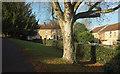 ST7264 : Twerton churchyard by Derek Harper