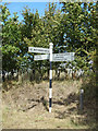 TG1122 : Signpost on Norwich Road by Geographer