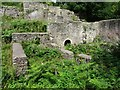 SO5808 : Remains of Darkhill Ironworks by Philip Halling