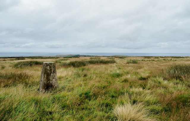 Trig point on Newton Mulgrave Moor