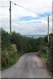 SX5646 : Lane to Revelstoke by Stephen McKay