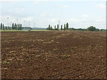 SK7353 : Ploughed field next to Southwell Racecourse by Alan Murray-Rust