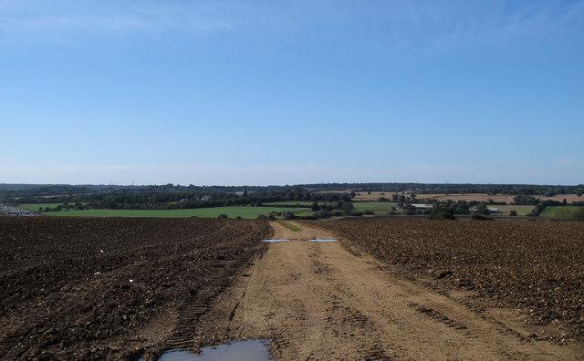 Footpath on farm track through tilled land, Navestock
