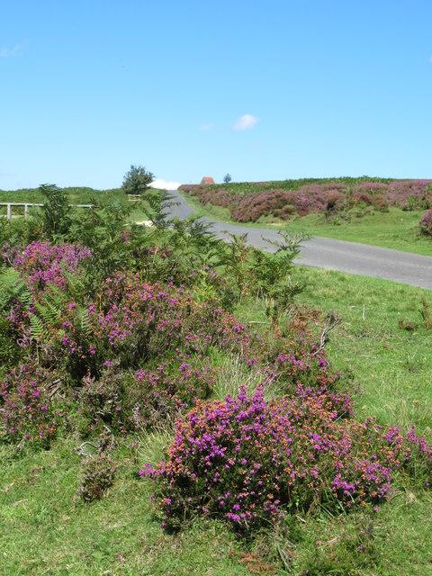 Moor road at Hazel Green
