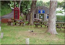 SX5646 : Revelstoke Park by Stephen McKay