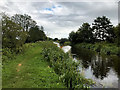 SD4614 : Leeds and Liverpool Canal, Rufford Branch by David Dixon