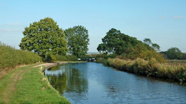 Canal approaching Brick Kiln Lock near Gailey