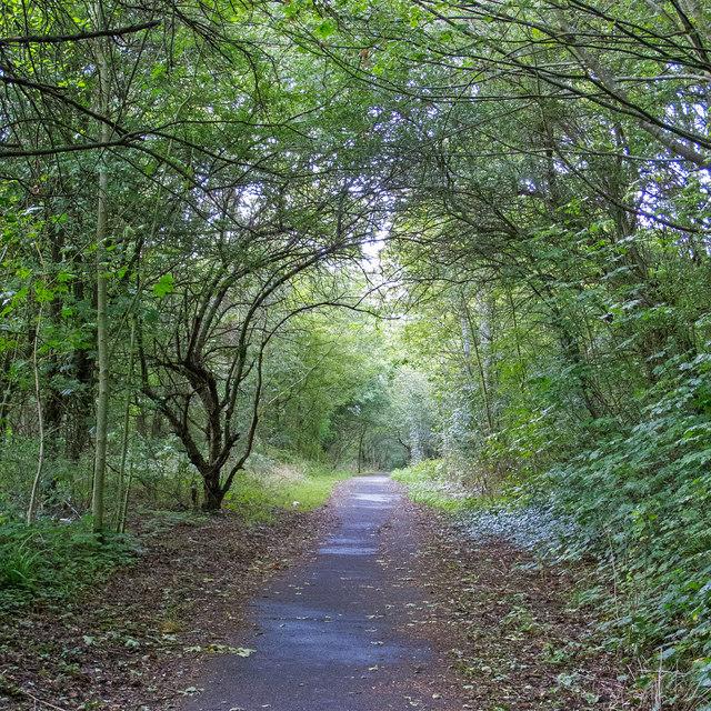 Footpath near Weald Road, Brentwood