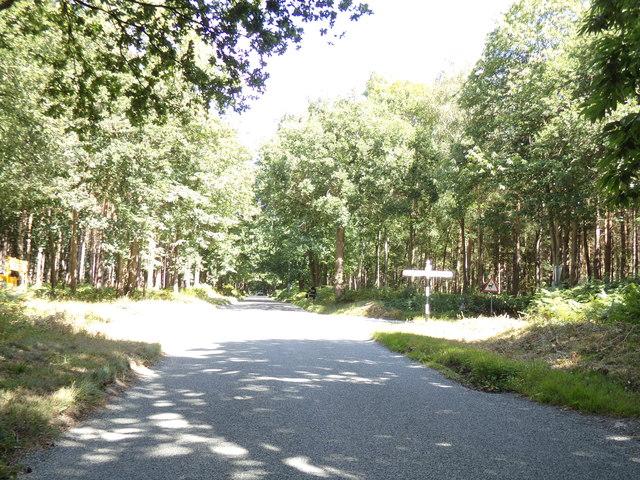 Felthorpe Road, Attlebridge