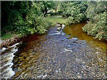 J3731 : The Shimna above the New Bridge on the day after Storm Francis by Eric Jones