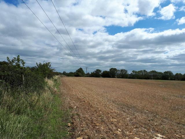 Stubble field near the A40