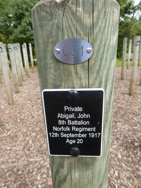 VJ Day at the National Memorial Arboretum (250)