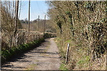 TQ5740 : Track to Smockham Farm by N Chadwick