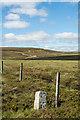 NY8418 : Boundary stone beside fence line by Trevor Littlewood