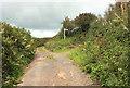 SX7853 : Green lane junction near Halwell Cross by Derek Harper