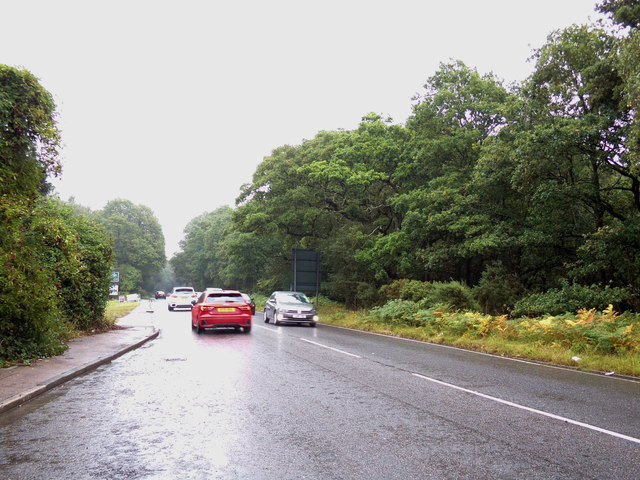 A104 Epping Road, Epping