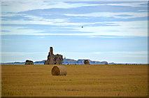 NO5101 : Newark Castle ruins, St Monans, Fife by Jerzy Morkis