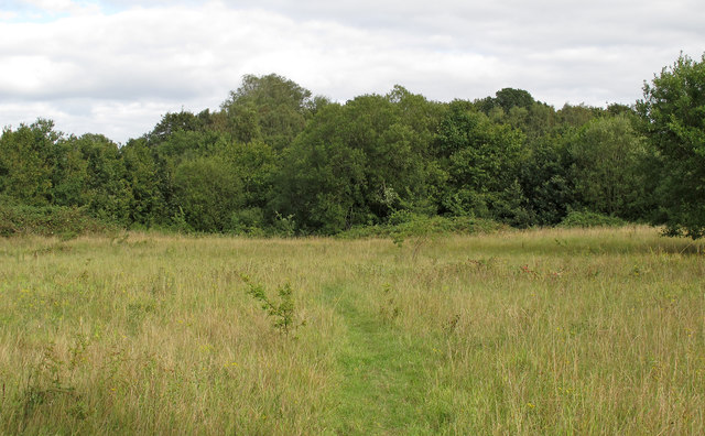 Open land at Merrymeade Country Park, Brentwood