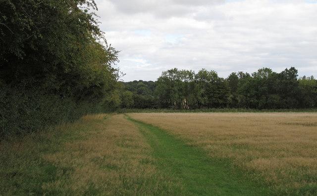 Field near Doddinghurst Road, Brentwood