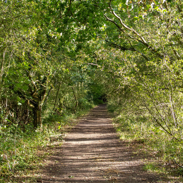 Hullett's Lane, Bentley near Brentwood