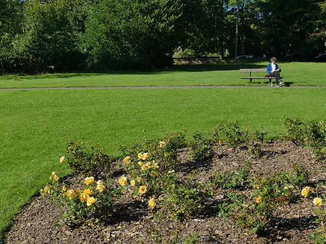 Rose garden, Roundhay Park