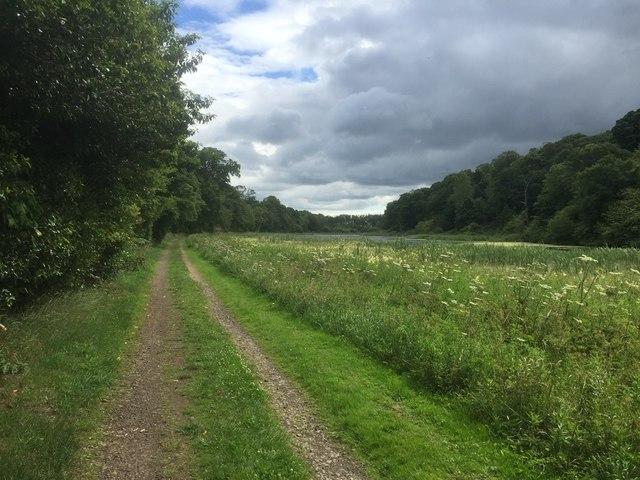 Path by Balgone Lake