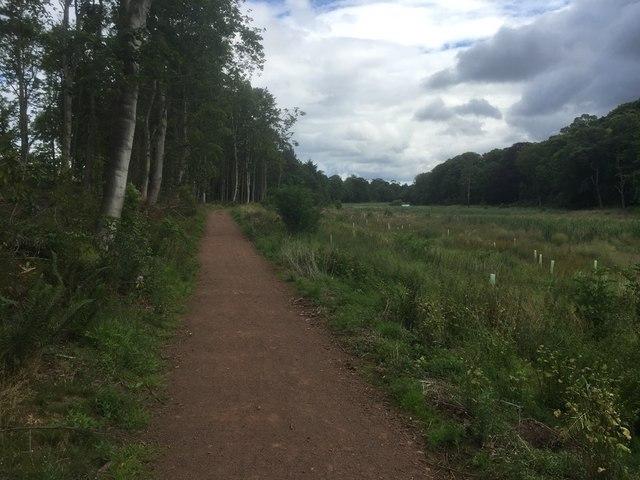 New path, Balgone