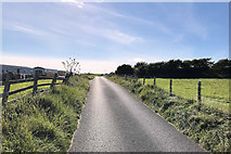 SD2063 : Hare Lane, The Road to South Walney by David Dixon