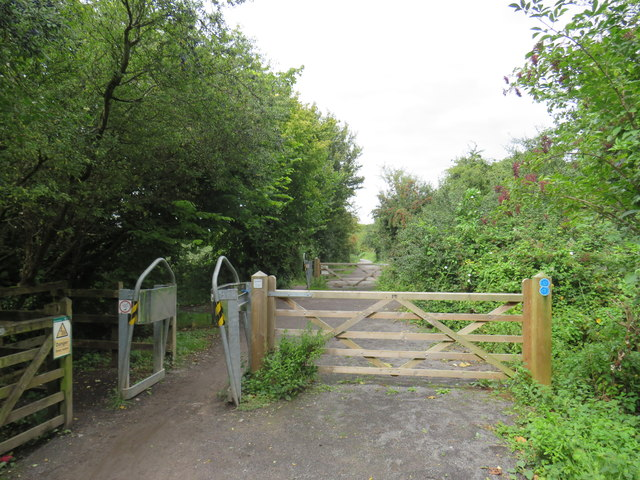 Strawberry Line path near Winscombe