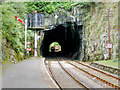 SD3484 : Tunnel at Haverthwaite Station by David Dixon