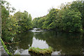 NY3603 : River Brathay at Clappersgate by Bill Boaden