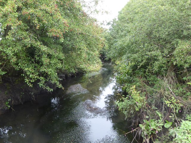 Yeading Brook north of Ten Acre Wood