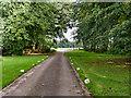 SJ7381 : Driveway at Tatton Park by David Dixon