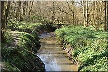 TQ5638 : River Grom by N Chadwick