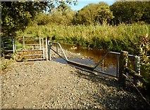 NS7177 : Flooded path by Richard Sutcliffe