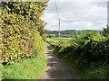 SD5923 : Track to Walmsley Fold by David Dixon