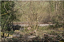 TQ5638 : Spa Valley Line by N Chadwick