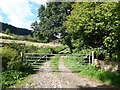 SO4423 : Driveway to Trewadoc Farm by Oliver Dixon