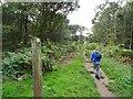 SO8383 : Staffs Way Steps by Gordon Griffiths
