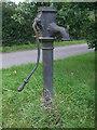 ST6798 : Water pump on Ham green by Neil Owen