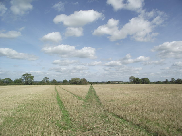 Footpath from Arnesby to Wistow