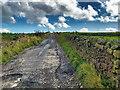 SD7624 : Track towards Elm Tree Farm by David Dixon