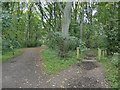 SE2431 : Footpath and bridleway in Farnley Hall Park by Stephen Craven