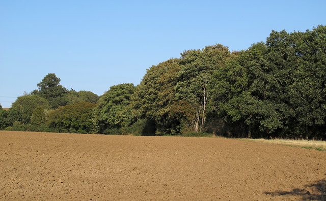 Recently tilled field near Tawney Lane, Stapleford Tawney