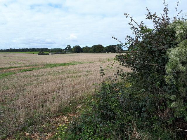 View towards Cripp's Barn